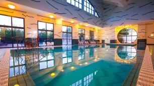 n015597_2020oct01_new-york-hotel-swimming-pool_16-9